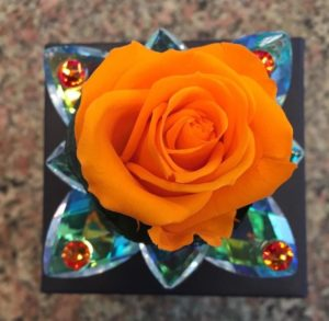 Rose stabilizzate Trieste