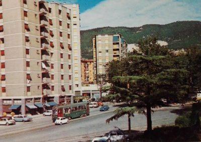 Fiori Astrid al Boschetto, 1967