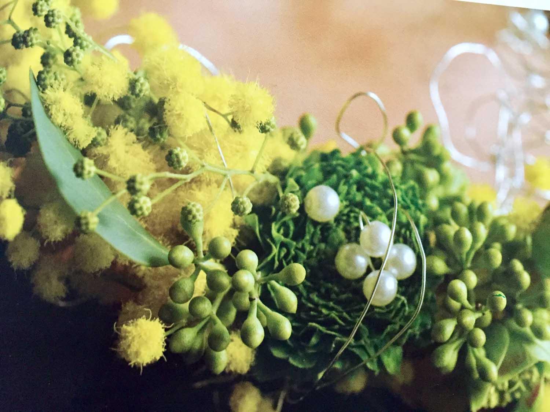 Il significato del fiore di mimosa
