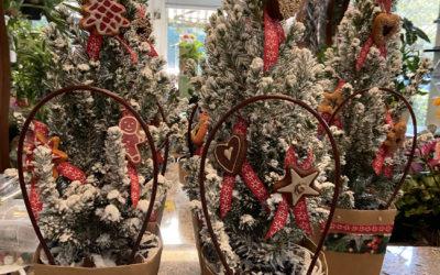 Albero di Natale: storia e origini della tradizione